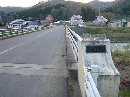 安比川の桜並木30(2012.5.7)