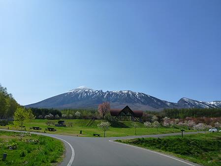 岩手県県民の森の桜03(2012.5.13)