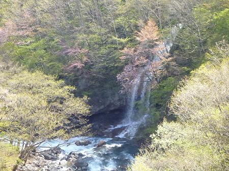 森の大橋06(2012.5.13)