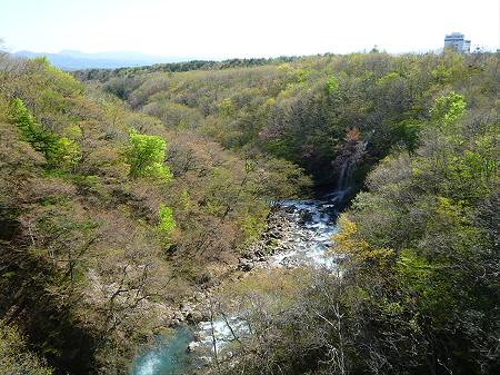 森の大橋07(2012.5.13)