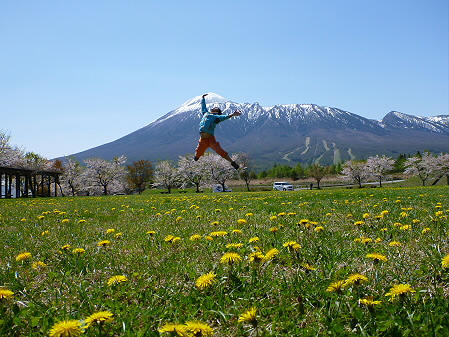 八幡平市さくら公園01(2012.5.13)ジャンプ!