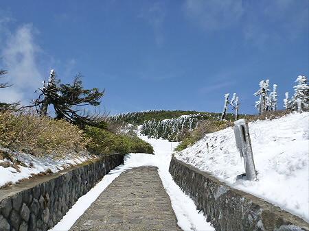 八幡平山頂散策04(2012.5.13)