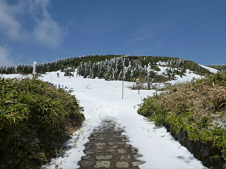 八幡平山頂散策07(2012.5.13)