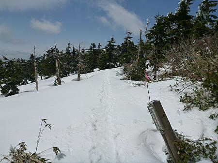 八幡平山頂散策10(2012.5.13)