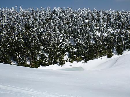 八幡平山頂散策15(2012.5.13)