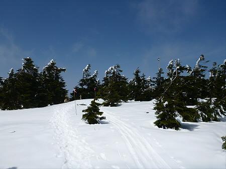 八幡平山頂散策18(2012.5.13)