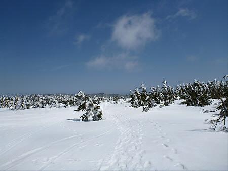 八幡平山頂散策23(2012.5.13)