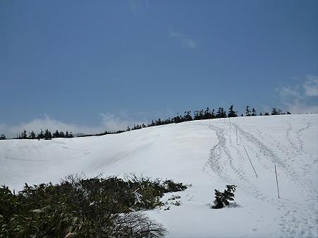 八幡平山頂散策29(2012.5.13)