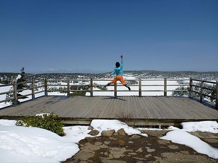 八幡平山頂散策31(2012.5.13)