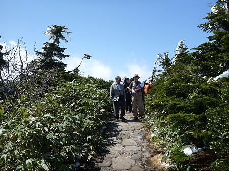 八幡平山頂散策33(2012.5.13)