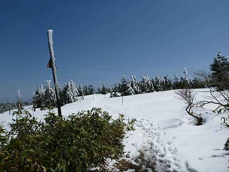 八幡平山頂散策40(2012.5.13)