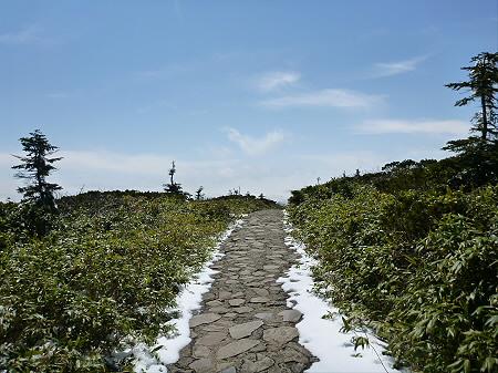 八幡平山頂散策48(2012.5.13)