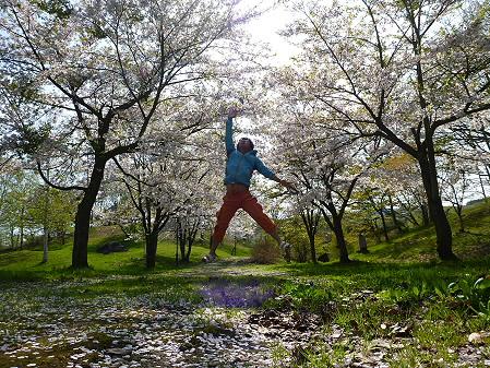 八幡平市さくら公園午後01(2012.5.13)ジャンプ!
