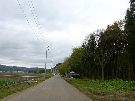 石割桜を探して02(2012.5.13)