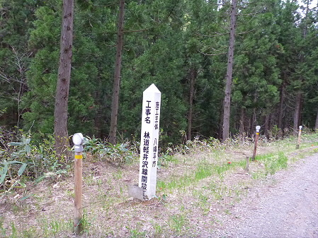 石割桜を探して21(2012.5.13)