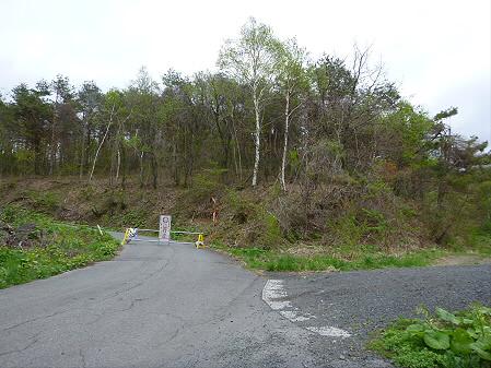 石割桜を探して23(2012.5.13)