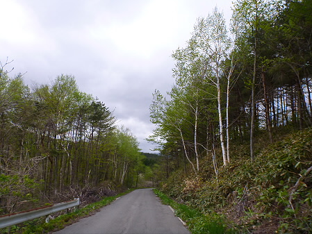 石割桜を探して24(2012.5.13)