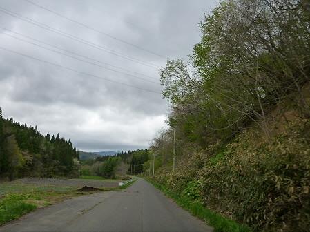 石割桜を探して25(2012.5.13)