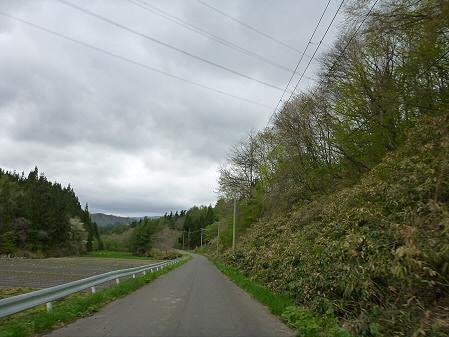 石割桜を探して26(2012.5.13)