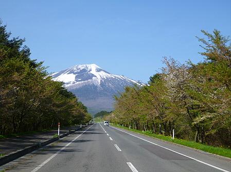 上坊牧野入口付近の桜並木01(2012.5.14)