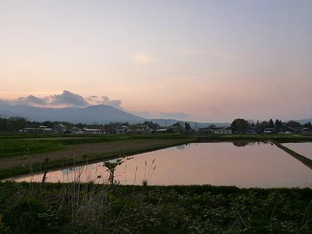 夕方、田んぼのある風景02(2012.5.18)