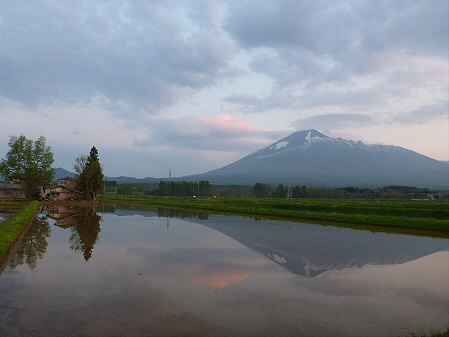 夕方、田んぼのある風景03(2012.5.18)
