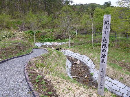 北上川北限の湧泉05(2012.5.19)