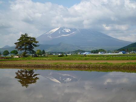 朝、田んぼがある風景03(2012.5.19)