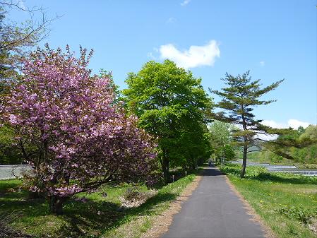 明治百年記念公園07(2012.5.19)