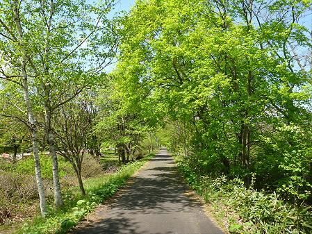 明治百年記念公園11(2012.5.19)