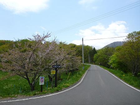 岩手県県民の森03(2012.5.19)