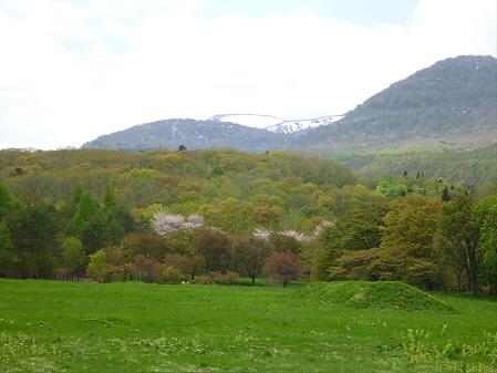 岩手県県民の森05(2012.5.19)