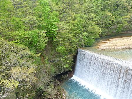 森の大橋02(2012.5.19)