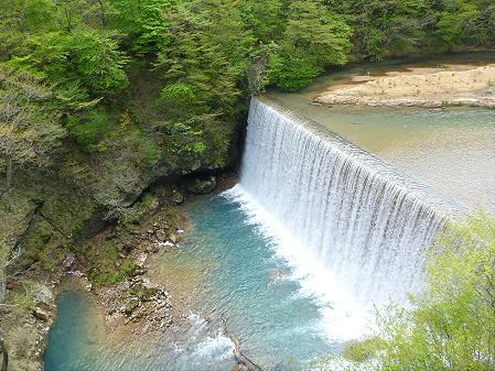 森の大橋03(2012.5.19)