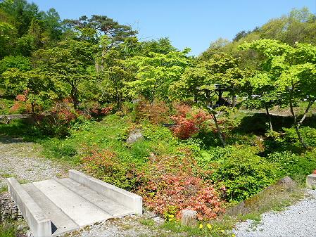 長嶺神社05(2012.5.20)