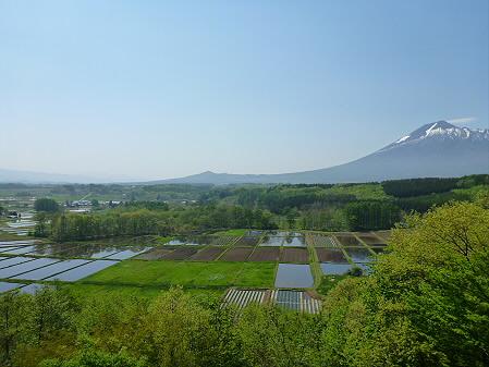 岩手山と田んぼ01(2012.5.20)