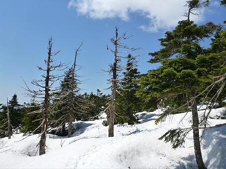残雪の八幡平07(2012.5.20)