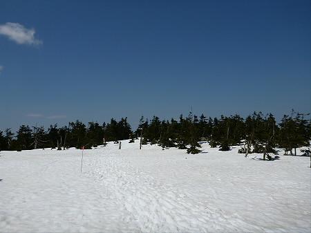 残雪の八幡平13(2012.5.20)