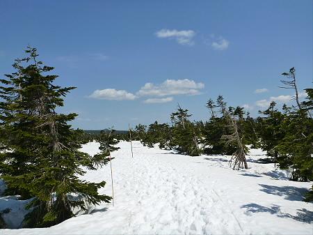 残雪の八幡平16(2012.5.20)