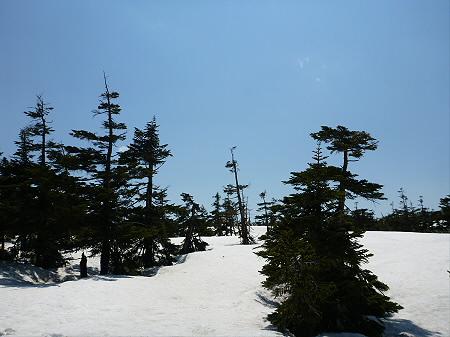 残雪の八幡平32(2012.5.20)