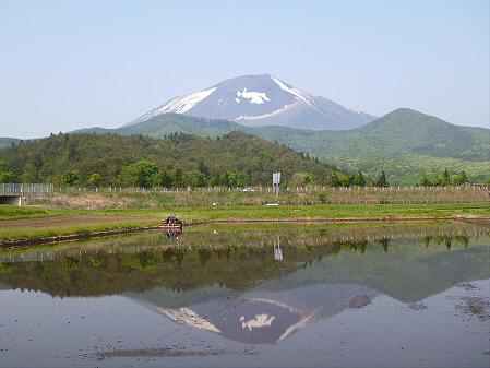 朝、田んぼがある風景01(2012.5.21)