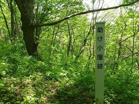七時雨山山開き11(2012.6.3)