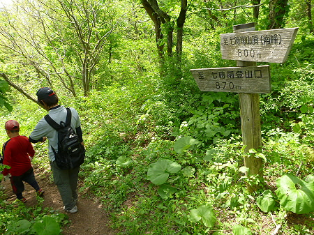 七時雨山山開き51(2012.6.3)
