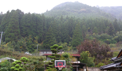 我が家の、雨の日の風景