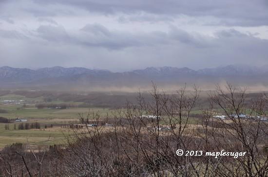強風の…2/20130531