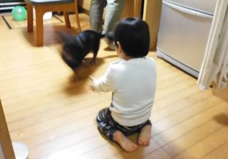 ブログ2 1201三つ葉 (4)