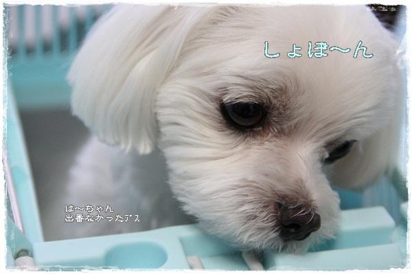 IMG_5483.jpg