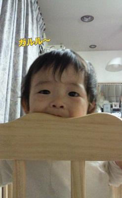 NEC_0266.jpg