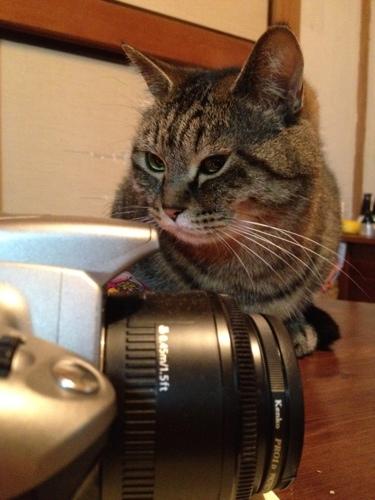 カメラがうつっているということは