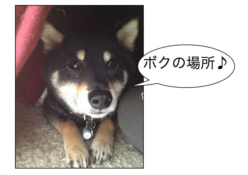 Page_1_20130413070009.jpg